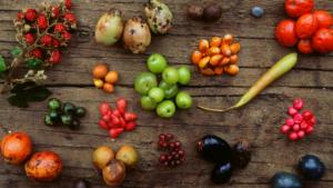 veg and berries